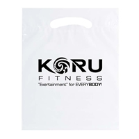 """Picture of Small Reusable Reinforced Die Cut Bag - 9"""" W x 12"""" H x 2"""" D"""