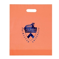 "Picture of Foil Stamped Frosted Die Cut Bag - 15"" W x 18"" H x 4"" D"
