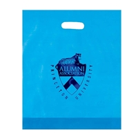 Promo Foil Stamped Frosted Die Cut Bag