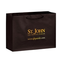 Paper Retail Shopping Bags with Logo