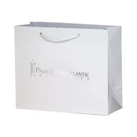 Custom Printed Paper Retail Bags