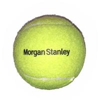 Customized bulk Pet Tennis Balls